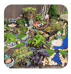 Fairy Gardens pic