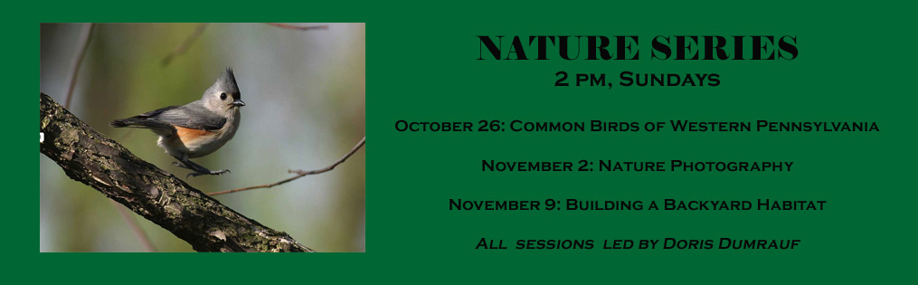 nature series web banner